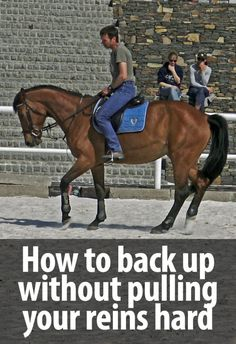 How to teach a horse to back up without pulling your reins too hard - Radek Libal