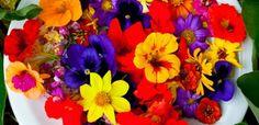 Se virando sem grana: Salada de Flores