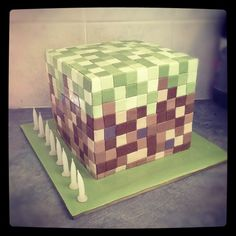 minecraft cake for Tims bday in July