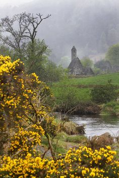 Glendalough, County Wicklow, Ireland….