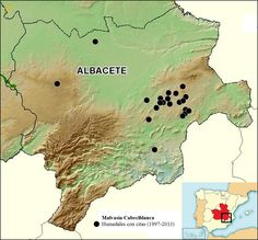 Humedales donde se ha citado la Malvasía Cabeciblanca en la provincia de Albacete (Castilla-La Mancha), según los censos mensuales del periodo 1998-2013 y otros datos. Realización: Juan Picazo.