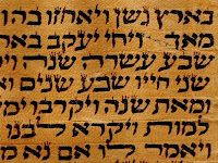 """Torah means """"teaching"""" & refers to the books of Moses- Genesis, Exodus, Leviticus, Numbers & Deuteronomy.  A Torah scroll is made from sheets of parchment, which is made from the skin of a kosher animal.  It is written by hand in Hebrew by a professional scribe, called a sofer & is read from right to left.  The sofer takes at least a year to write it out.  He's not allowed to write from memory but must copy from a book of the Torah, & keep checking for mistakes."""