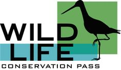 Support a Federal Wildlife Conservation Stamp - Create another income stream for our National Wildlife Refuge System Woodworking Blueprints, Small Woodworking Projects, Bird Suet, Bird Feeders, Homemade Suet Recipe, Bird House Plans Free, Bird Breeds, Bird Feeder Plans, Garden Care