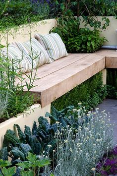 Wooden bench underplanted with herbs next to an edible garden including Brassicas - Kale and Helichrysum - Curry Plant -