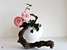 The Zen-Images Ikebana Blog: February 2009