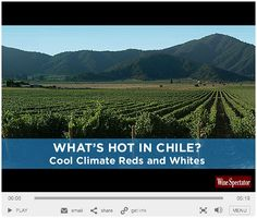 What's Hot In Chile: Video | Wine Spectator
