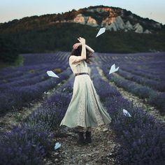 Mình yêu nhau chăng – mình không rõ Anh và em đùa giỡn với yêu đương  Ơi Oải Hương, loài thảo hoa núi đá Những bông hoa xanh biêng biếc tình ta... (Lavender)