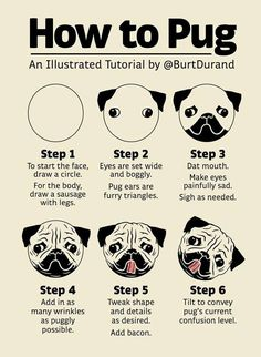 """on I present """"How to Pug,"""" an illustrated tutorial.I present """"How to Pug,"""" an illustrated tutorial. Reno Animal, Shih Tzu Hund, Pug Cake, Pugs And Kisses, Pug Puppies, Terrier Puppies, Bull Terriers, Boston Terrier, Dog Art"""