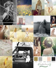 that color palate