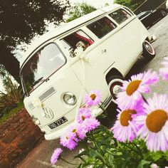 VW Camper wedding in Paignton and Torquay Devon Holidays, North Devon, Vw Camper, Cambridge Satchel, Weddings, Wedding, Marriage