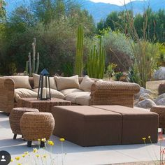 1000 images about outdoor furniture rental on pinterest for Designer 8 furniture