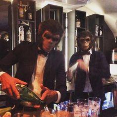 Prise en otage du bar : les #MonkeyCrashers en action !