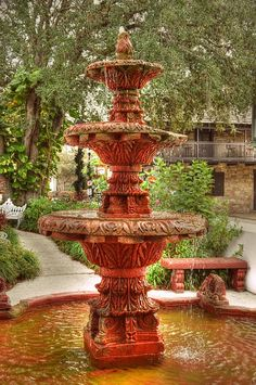 St. Augustine has so many fountains to gaze at, I loved this one in the historic district.