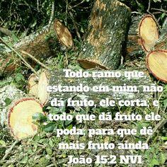 Jo 15:2