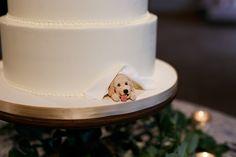 wedding cakes beach Pet Wedding Ideas: 61 Too-Cute Ways to Include Your Pet in Your Wedding Wedding Goals, Wedding Bride, Wedding Planning, Dream Wedding, Wedding Day, Wedding Ideas Uk, Dogs In Wedding, Ibiza Wedding, Beach Weddings