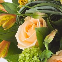Le Bouquet Pomme de Reinette - #livraisonfleurs #bouquetdefleurs #livraisondefleurs #envoyerdesfleurs #livraisonfleur #bouquetderoses #livraison #fleurspascher #fleurslivraison #bouquetderose #bouquetsdefleurs #bouquetfleurs