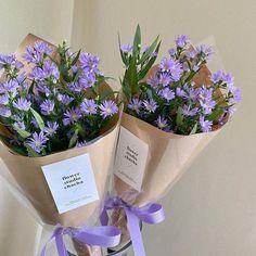 Lavender Aesthetic, Purple Aesthetic, Aesthetic Dark, Plant Aesthetic, Flower Aesthetic, My Flower, Beautiful Flowers, Flower Studio, No Rain