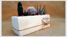 composizione di piante grasse. idea per scrivania ufficio. montecchio emilia. casalungavivai.it Piante e Fiori. composizioni su ordinazione.