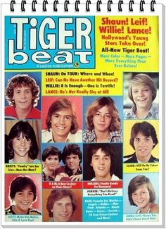 Tiger Beat Magazine - essential reading material growing up