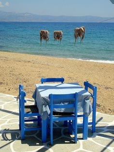 Summer is coming Logaras beach, Paros island, Greece. The calamari is incredible in Greece Santorini, Places To Travel, Places To Visit, Paros Greece, Paros Island, Greek Isles, Greece Islands, Holiday Pictures, Summer Is Coming