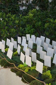 Place card holders with clips are placed in a bed of green moss and slate gray stones for this beautiful outdoor wedding.