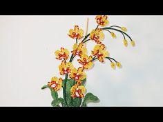 """Orchard flower ОРХИДЕЯ МАЛЫШКА """"ЧЕБУРАШКА"""" из бисера МК от Koshka2015-цветы из бисера бисероплетение - YouTube Beading Patterns, Make It Yourself, Youtube, Plants, Beads, Bead Patterns, Pearler Bead Patterns, Plant, Youtubers"""