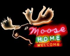 I don't know what a Moose Home is, a hotel?, anyway - a neon Moose!!