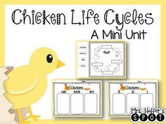 Chicken Life Cycle This mini unit is all about Chickens. It includes anchor charts, sequencing cards, and response sheets.Life CycleKWL ChartsCan/Have/AreDo You Like Chickens? Yes/No