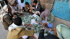 Let's learn to go without qat, say Yemenis