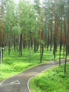 Dzintari Forest Park - Jurmala, Latvia Baltic Region, Forest Park, Online Tickets, Lithuania, Trip Advisor, Arch, Country Roads, Europe, Photos