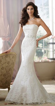 store browse catalog bridal specialty david tutera