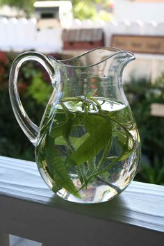 Fill an entire pitcher with ice water and drop in a few sprigs of fresh picked lemon verbena. It adds a lemon flavor to water without any bitterness. It is refreshing and delicious.