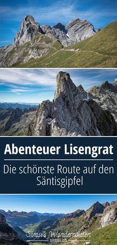 Mall Of America, Royal Caribbean, Swiss Alps, Half Dome, Switzerland, To Go, Hiking, Mountains, Amigurumi