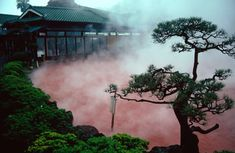 The Nine Hells of Beppu - Beppu, Japan