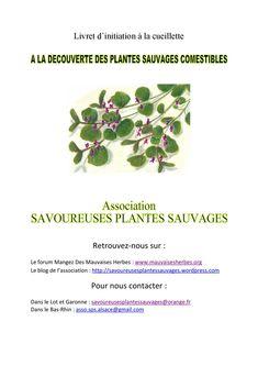 Un livret d'initiation pour découvrir les plantes sauvages comestibles, les ramasser et les préparer