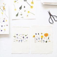 Pressed Flower Artworks from MR Studio London (Gardenista: Sourcebook for Outdoor Living) Flower Artwork, Modern Planters, Nature Crafts, Flower Cards, Botanical Prints, Greeting Cards Handmade, Textile Art, Decoration, Crafts To Make