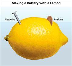 lemon battery science fair project - Google Search