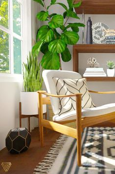 Cozy modern chic boho living room with patterned pillows and decor.