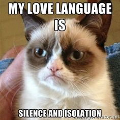grumpy cat's love language