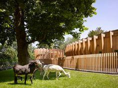 Petting Zoo by Kresings Architektur