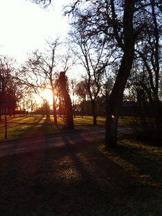 Voipaala, Sääksmäki, sunset