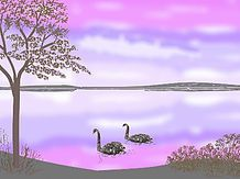 Swans on lake Valentines day ersonalise card