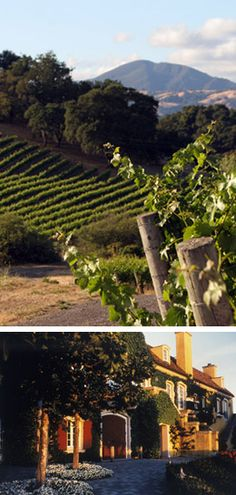 If you are ever in Sonoma, this is a must see!