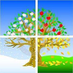strom -4 roční období