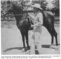 Witez II--Legendary stallion who was rescued from Poland by General Patton during World War 2 and eventually imported to the US.