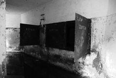 zanim zaczniecie zwiedzać Cypel zaopatrzcie się w mapę helskich fortyfikacji. #MiastoHel #pomorskie #bunkry #wakacje