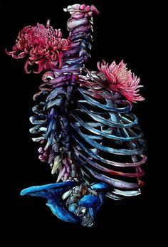 ghost in the machine - Bones + Mushrooms: Illustrations by Hernan Chavar Gore Aesthetic, The Lovely Bones, Ghost In The Machine, Modern Surrealism, Anatomy Art, Green Art, Beautiful Mind, Skull And Bones, Skull Art
