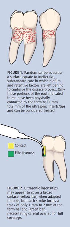 Dimensions of Dental Hygiene