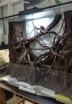 10 Tips on Designing a Freshwater Nature Aquarium Reptile Habitat, Reptile House, Reptile Room, Reptile Cage, Reptile Enclosure, Reptile Tanks, Snake Terrarium, Aquarium Terrarium, Diy Terrarium