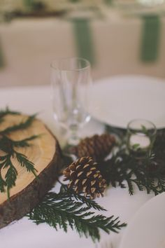 Pine Cones Ferns Log Decor Treehouse Forest Wedding Washington http://stacypaulphotography.com/